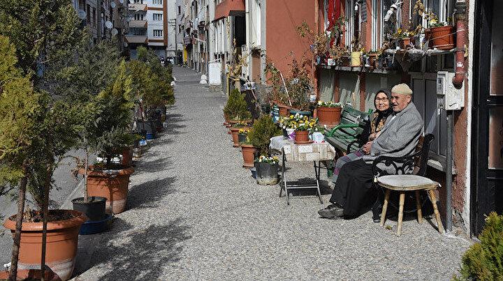 Yürekleri ısıtan hikaye: 55 yıllık eşi felç kalında sokağı çiçek bahçesine çevirdi