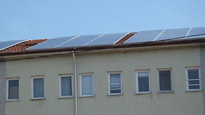 Binanın çatısına kurdular: Yedi ayda 10 bin lira gelir sağladılar
