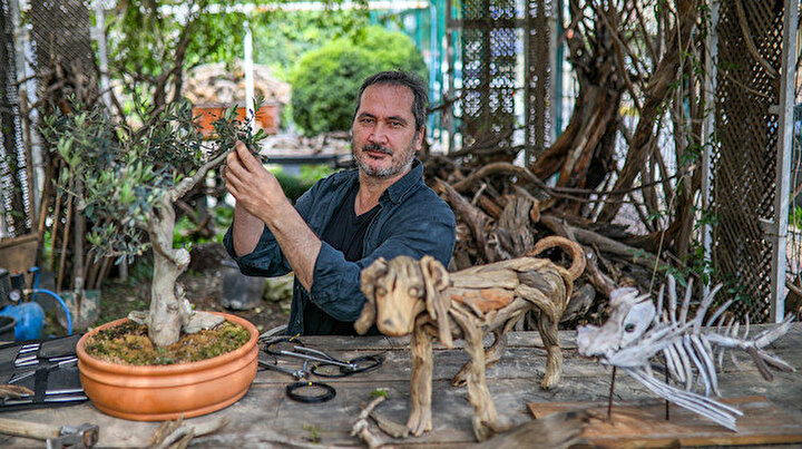 Sokaktan topluyor 300 bin liraya satıyor: Antalyalı sanatçı ağacı heykele dönüştürüyor