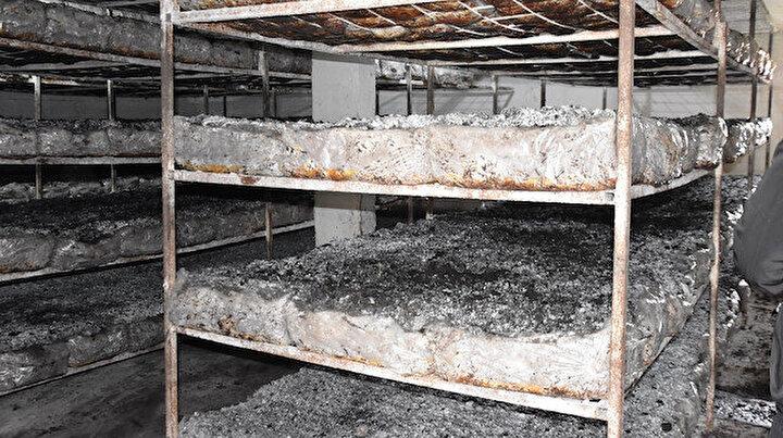 Bitlis'te üretilen kültür mantarı bölge illerine pazarlanıyor