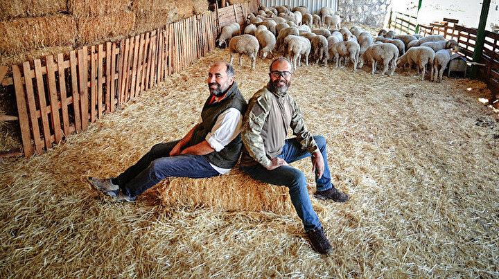 Kariyerlerini bırakıp çiftlik kurdular: Bilgisayar oyununda yaşıyor gibiydim
