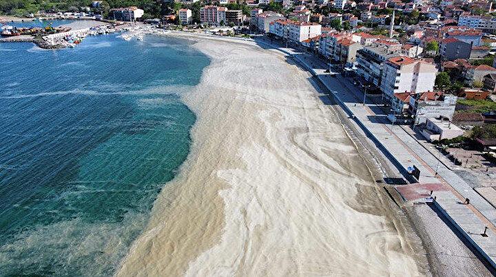Deniz salyaları Tekirdağ sahillerini kapladı