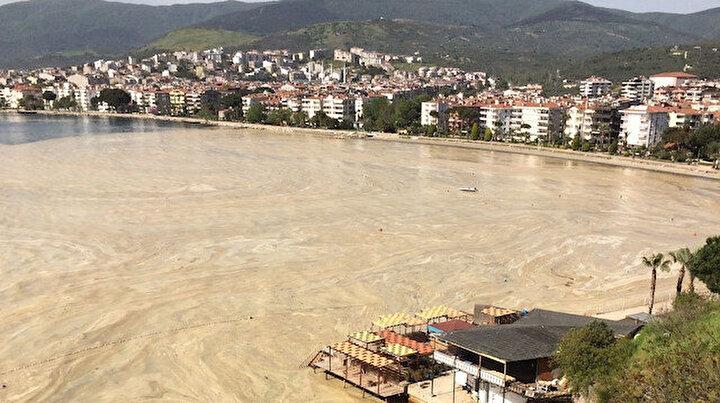 Marmara Denizinde salya kabusu sürüyor: Erdek Körfezi de deniz salyasıyla kaplandı