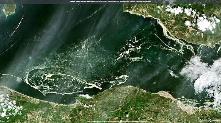Marmara Denizindeki deniz salyaları uydudan bile gözüküyor