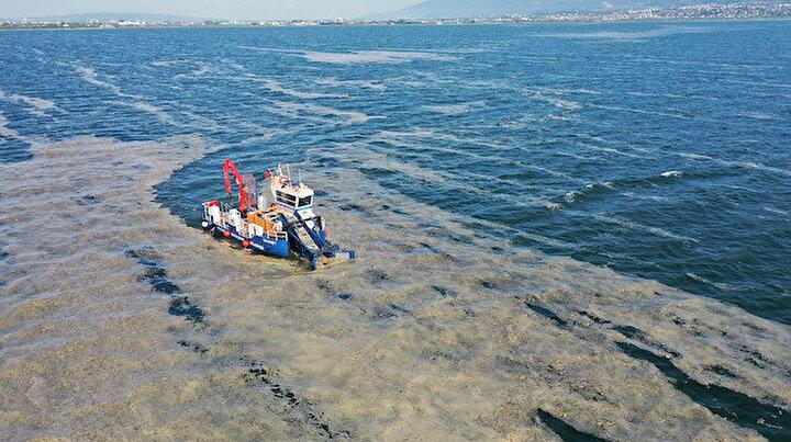 İzmit Körfezinden deniz salyası temizliği: Hem balıkçıların hem vatandaşın kâbusu olmuştu