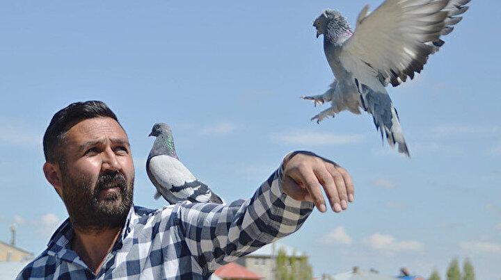 300 güvercini için arazi satın aldı: 350 bin lira harcadı
