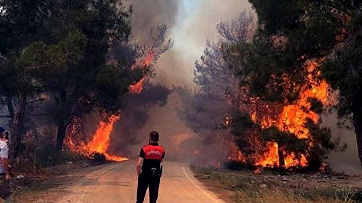 Adanada orman yangını: Bir hektar alan zarar gördü