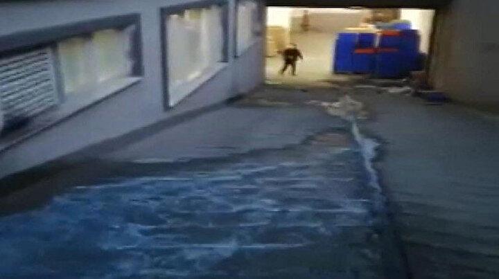 Esenyurtta mavi su bu kez iş yerlerineaktı: Sokak köpekleri içip ölüyor