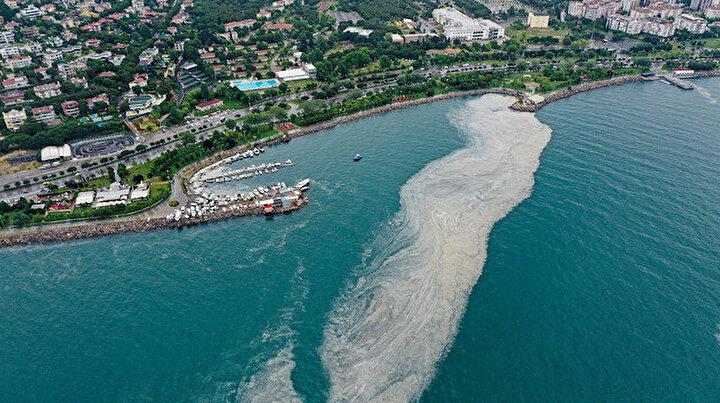 Müsilaj istilası Anadolu Yakası kıyılarında etkisini sürdürüyor