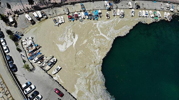 Balıkçıların kâbusu bitmiyor: Deniz salyası ağları duman etti balık yok