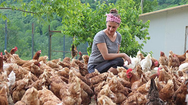 Özlediği köyüne dönüp hayalini gerçekleştirdi şimdi tavuk çiftliği var