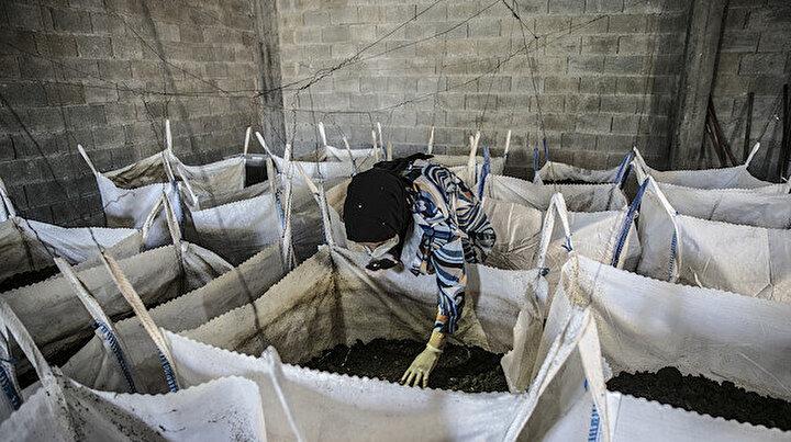 Mezun olur olmaz evinin bodrumunu üretim merkezine çevirdi: Yılda 12 bin ton üretiyor