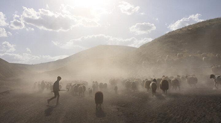Nemrut Dağı eteklerine tozlu yolculuk başladı: 15 kilometre yürüyecekler