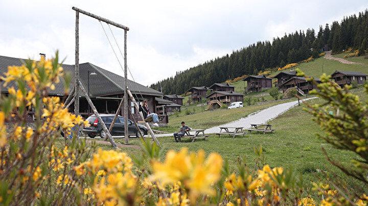 Alpleri aratmıyor: Oksijen deposu Kümbet Yaylası ziyaretçilerini ağırlıyor