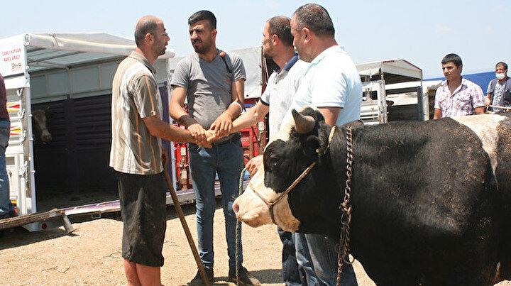 Korona bitmedi ama gelenek geri döndü: Kurban pazarlarında elle pazarlık devam ediyor