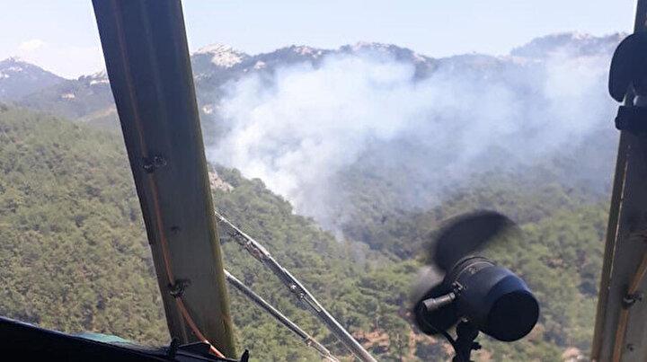Rekor sıcaklar sonrası beş ilde peş peşe orman yangını