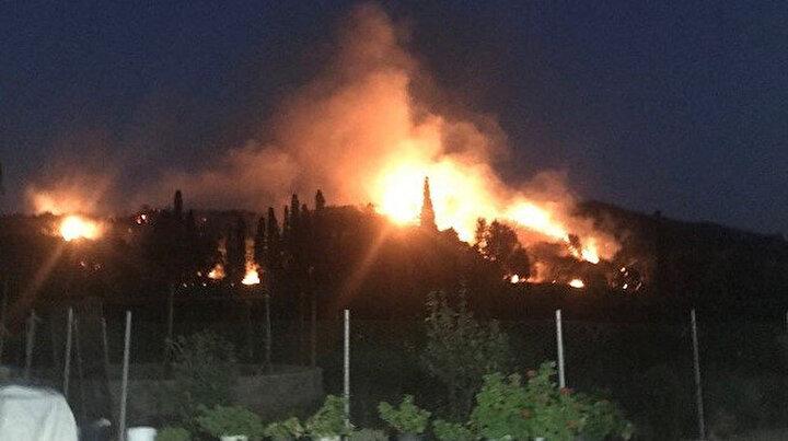 Bodrumda korkutan yangın: 10 hektar makilik alan kül oldu