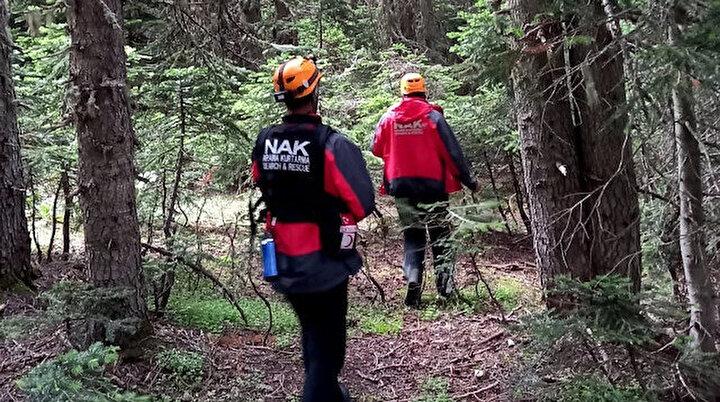 100 kişilik ekip her yerde onu arıyor: Odun toplamak için ormana gitmişti