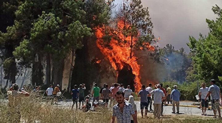 Muz seraları yandı: Traktörler alevlere teslim oldu! Vatandaşlar kovalarla müdahale ediyor