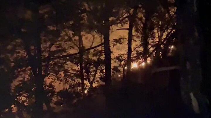 Bursa'da yıldırım düştü ormanlık alanda yangın çıktı: Üç saat sonunda yangın kontrol altına alındı