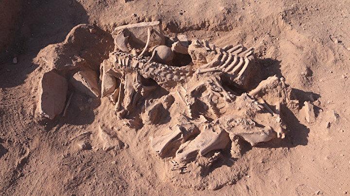 Vanda bilim insanlarını heyecanlandıran keşif: Urartuların ölü gömme geleneğine ışık tutacak