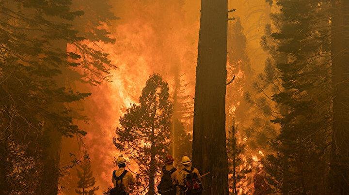 Kaliforniya alev alev: Caldor yangını 34 binden fazla yapıyı tehdit ediyor