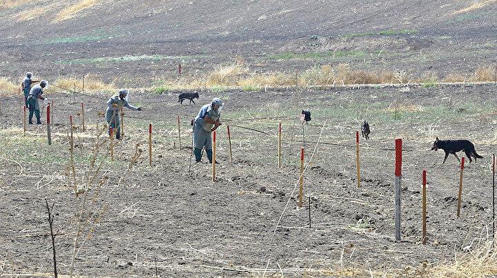 Azerbaycanın işgalden kurtarılan kentlerinde 10 aydır karış karış mayın temizliği yapılıyor