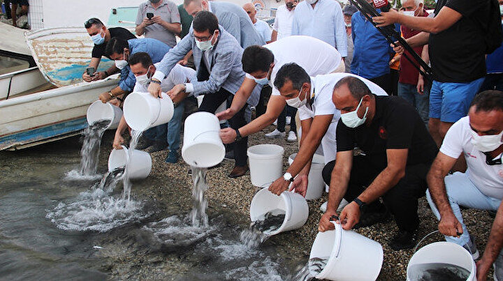 30 bin yavru balığı denize bıraktılar