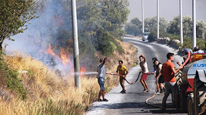 Bodrumda orman yangını: Vatandaşlar da seferber oldu