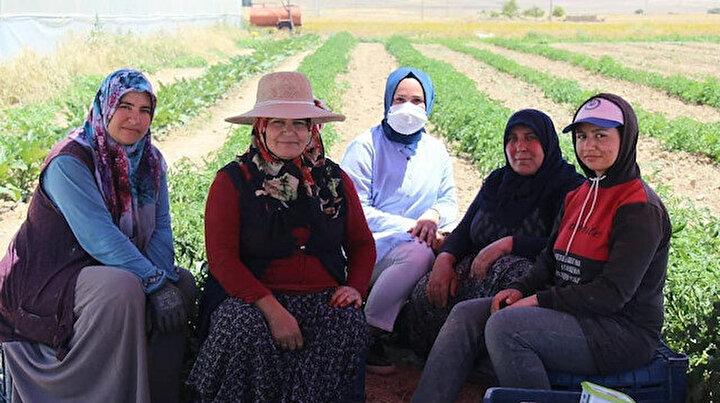 Gülağaç Kaymakamı Elif Nur Saçal Aşıklı Höyükten esinlendi: Kurduğu markayla 55 kadını iş sahibi yaptı