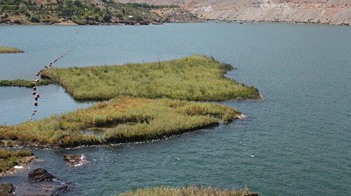 Yüzen adalar sabitlenecek: Yok olmaları önlenecek