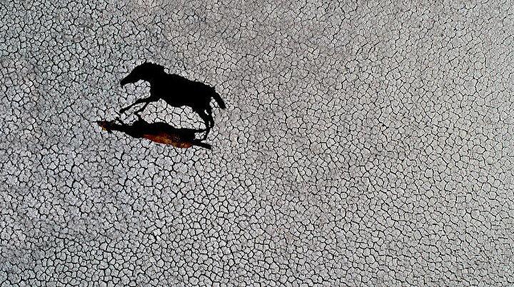 Konyadaki Suğla Gölünde korkutan manzara: Eski haline dönmesi çok zor