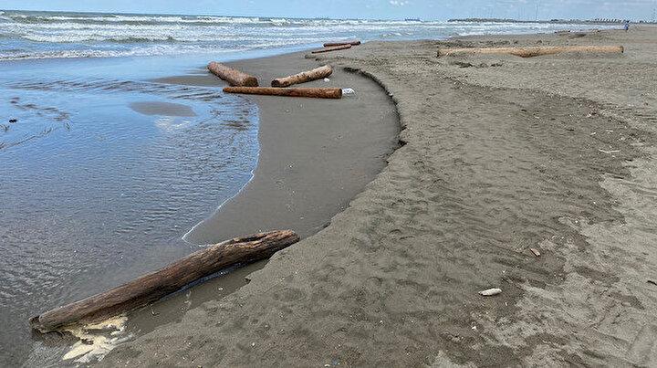 Bu kadarını tahmin bile edemezdik: Boyu 12 metreyi buluyor Karadenize yayıldı