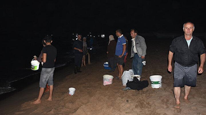 Karadenizde tonlarca balık kıyıya vurdu: Kovasını alan sahile koştu
