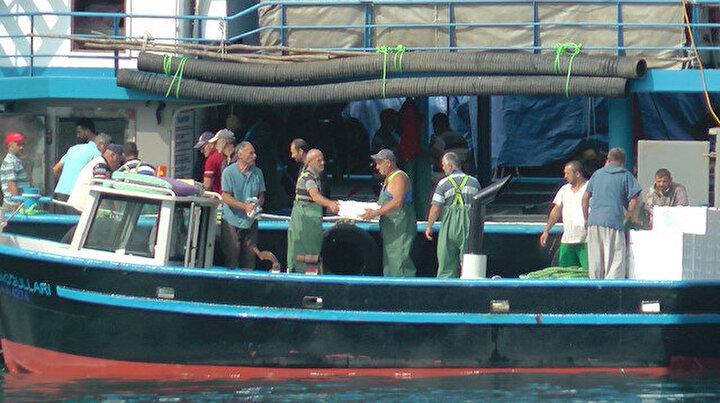 Karadenizde gırgır balıkçıları kasalarca palamutla barınağa dönüyor