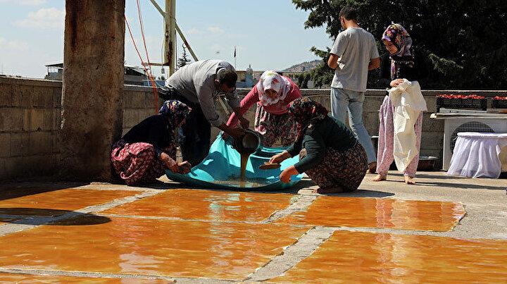 Gaziantepte üzümleri toplayan köylüler pekmez ve pestil telaşına başladı: Lezzetini güneşten alıyor