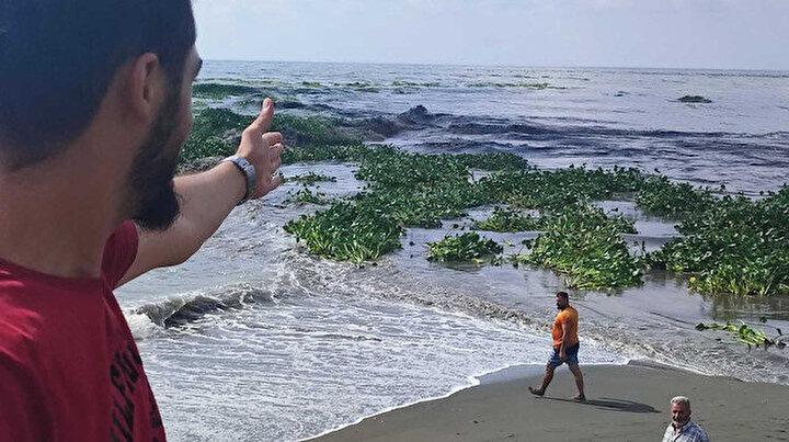 Su canavarları denizi istila etti Hatayda görenler şaştı kaldı: Bir an önce temizlenmeli