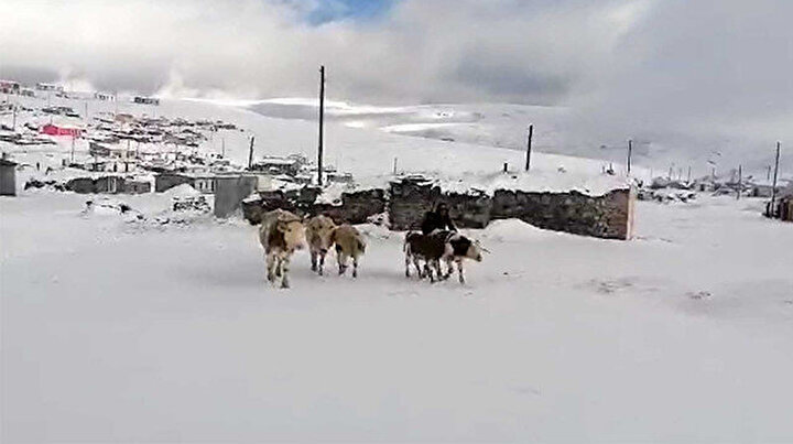 Kar kalınlığı 15 santimetreyi buldu: Yaylacıların dönüş hazırlıkları erken başladı