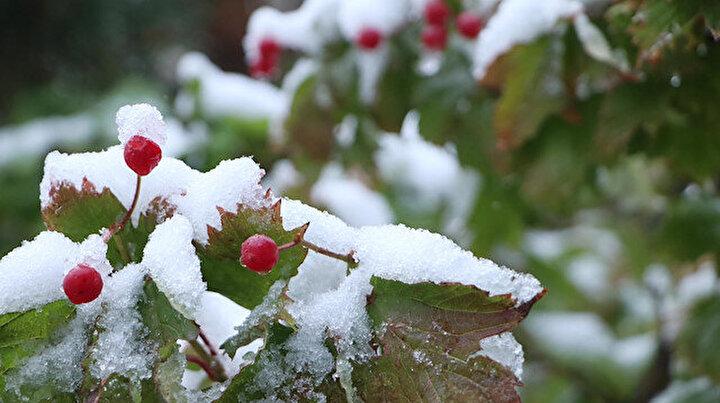 Palandöken dün gece yağan karla beyaza büründü