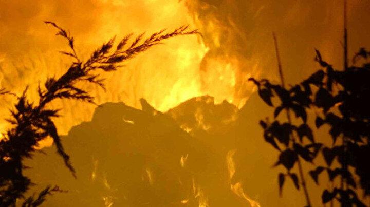 Kırklarelinde çiftlik yangını: Alevler geceyi aydınlattı