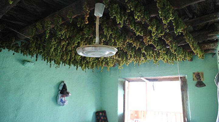 Mahallenin tamamının geçim kaynağı: Her evin tavanında görülüyor