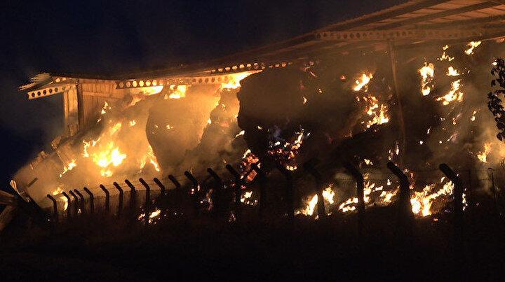 Kırklarelinde hayvan çiftliğinde yangın: Alevler geceyi aydınlattı, yangın kontrol altına alındı