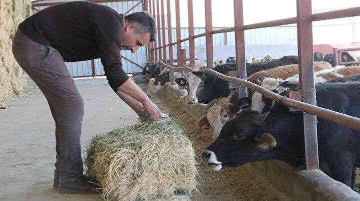 Muhtar TKDKdan aldığı destek ile köyünü tavuk ve besi çiftliğine döndürdü: Hayal bile edemezdik