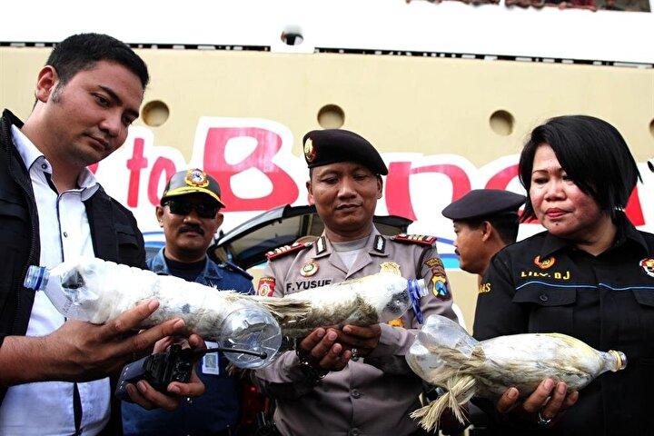 Endonezyada yılda sadece 1 kez yumurtlayan ve yasadışı yollardan ticareti yapılan 24 adet kakadu papağanını plastik şişelerin içerisine gizleyen kaçakçılar, papağanları yurtdışına kaçırmak üzereyken polis tarafından ele geçirildi.