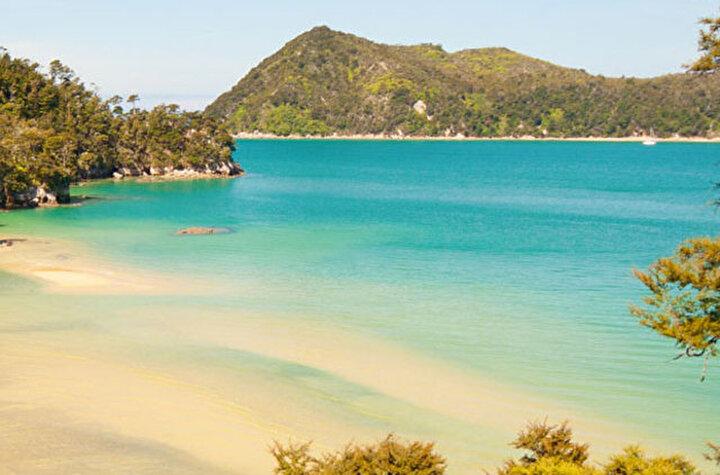Bağış yapan herkese, cömertliği, enerjisi ve ruhu için teşekkür edilmesi gerektiğini vurgulayan Bakan Maggie Barry ise Awaroa plajını satın almak için 2 milyon dolara yakın bağış yapıldı.