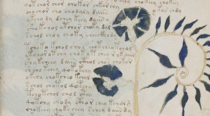 En gizemli kitap: Araştırmacılar bu çalışmada saçını başını yoluyor. Voynich'in el yazması, tamamen bilinmeyen bir yazı ve dilde yazılmış. Kitap aralarında tanımlanmamış bitkiler ve borularla birbirine bağlanmış banyo küvetlerinde oturan çıplak kadın çizimleri de dahil bir takım enteresan illüstrasyonlar içeriyor. 15. yüzyıla ait kitap bir zamanlar İmparator II. Rudolf'a aitti.