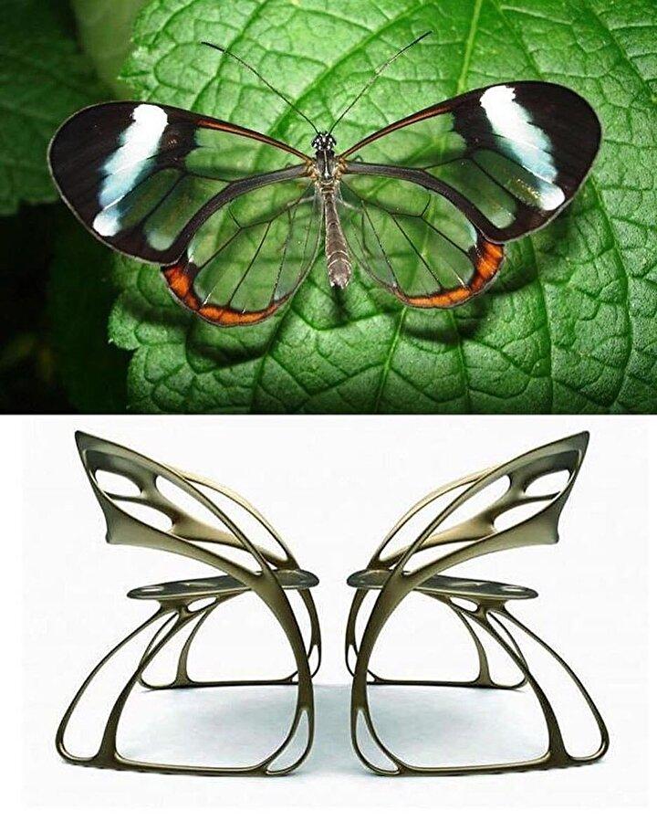 Kelebek ve kanatlarından ilham alınan sandalye.