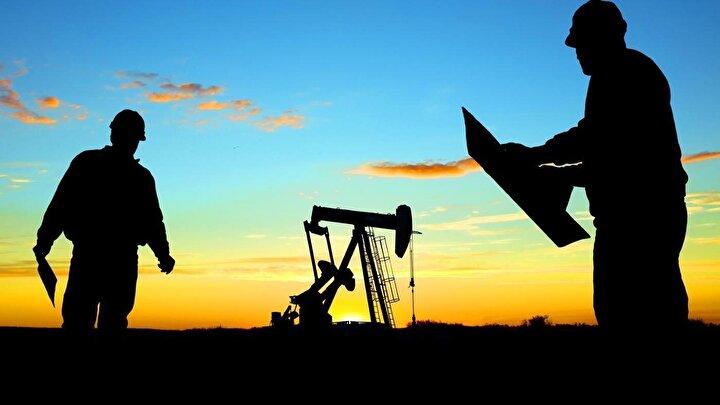 Petrol şirketlerinin net kar ve gelirlerinin artmasında küresel piyasada yükselen ham petrol fiyatları etkili oldu. Dünya genelinde en yaygın kullanılan Brent tipi ham petrolün varil fiyatı, geçen yıl bir önceki yıla göre yüzde 31,5 artışla ortalama 71,19 dolara yükseldi. 2017de Brent petrolün varili ortalama 54,15 dolar olmuştu.