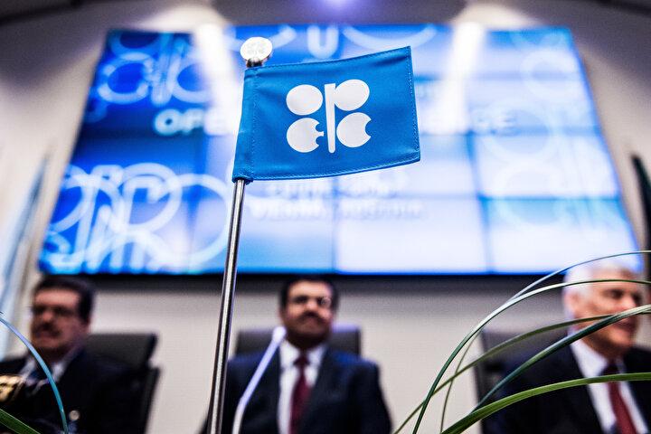 Petrol fiyatlarında görülen yükselişte ise Petrol İhraç Eden Ülkeler Örgütü (OPEC) ve Rusyanın 2016 sonundan itibaren üretim kesintisine gitmesi etkili oldu.  OPEC ve Rusyanın 7 Aralık 2018de yaptığı anlaşma kapsamında toplam petrol üretimlerini 2019un ilk 6 ayında günlük ortalama 1,2 milyon varil kısma kararı bu yıl petrol fiyatlarının artabileceğine işaret ediyor.