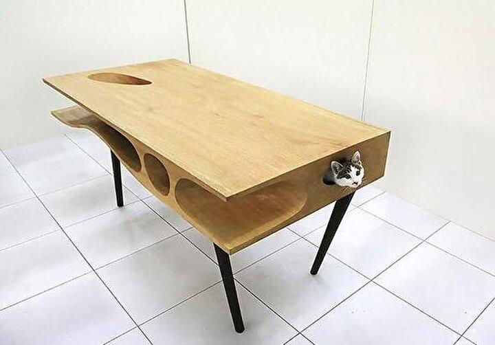 Kedisini düşünenler için özel bir masa